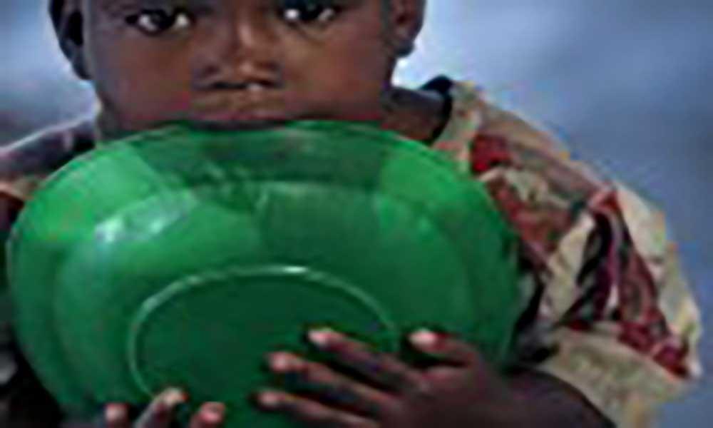 Na África subsariana há 224 milhões de pessoas que sofrem de subnutrição
