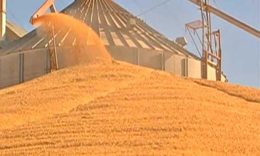Preços do milho de segunda e do açúcar aumentaram no segundo trimestre – ARFA