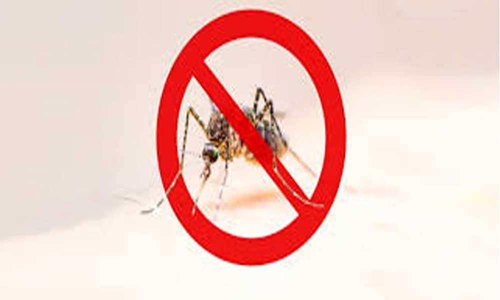 Ministério da Saúde realiza atelier sobre a situação do Paludismo em Cabo Verde
