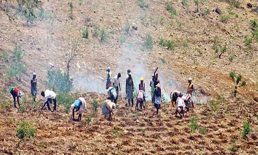 UE dá 7 milhões de euros a Cabo Verde para combater efeitos da seca