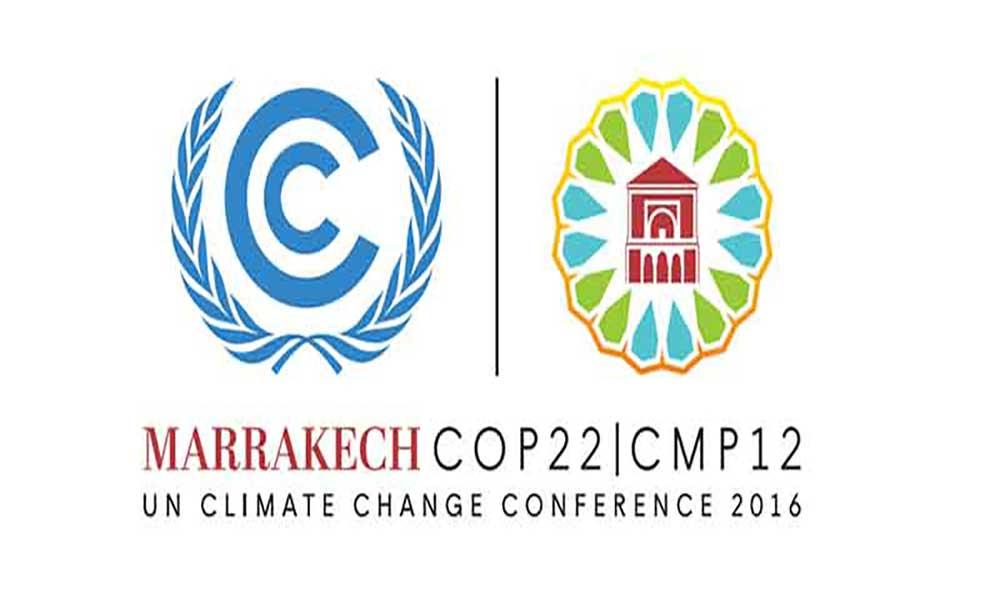 AMBIENTE: COP22 mobiliza sociedade civil de África