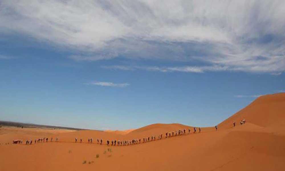 """""""Grande Muralha Verde"""": Um novo muro ergue-se em África para travar o deserto do Sahara"""