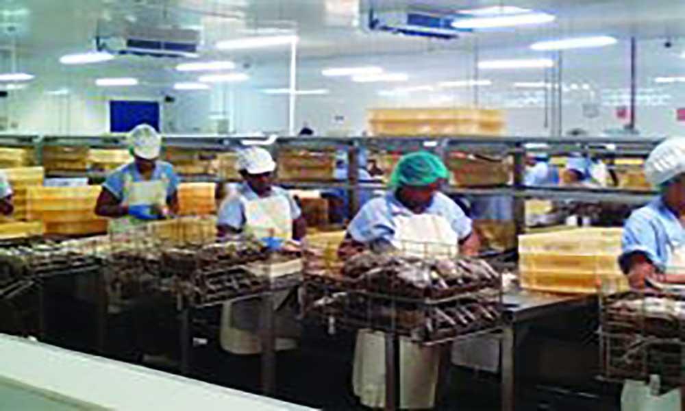 PTS visita Frescomar para se inteirar da situação laboral da empresa