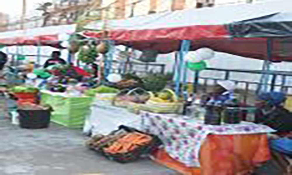 Cinza Santa Catarina