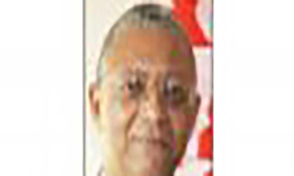 Dois anos depois, que balanço do desempenho da CM de S. Vicente ? (II)
