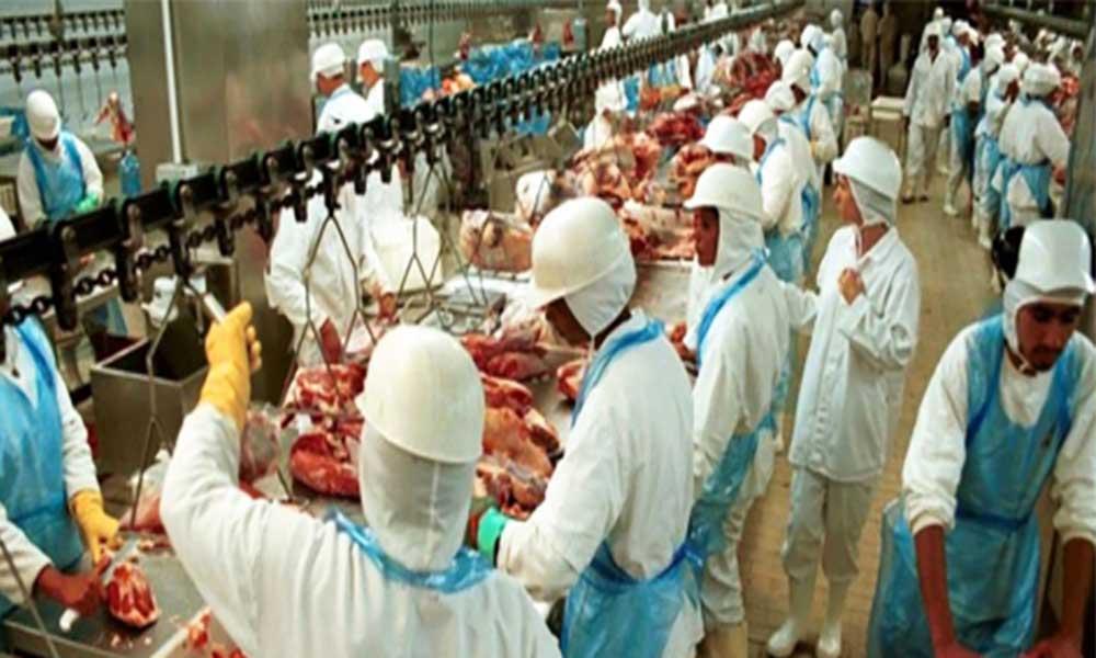 Brasil: UE e EUA exigem mais informações sobre o escândalo da carne