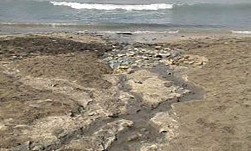 Praia do Lazareto: São-vicentinos pedem intervenção das autoridades