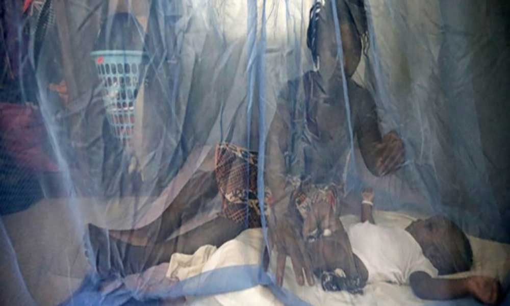 Angola distribui milhões de mosquiteiros