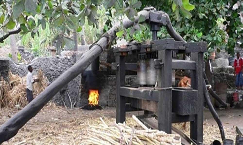 Santo Antão: Alambiques selados a partir de Agosto para valorizar o grogue genuíno