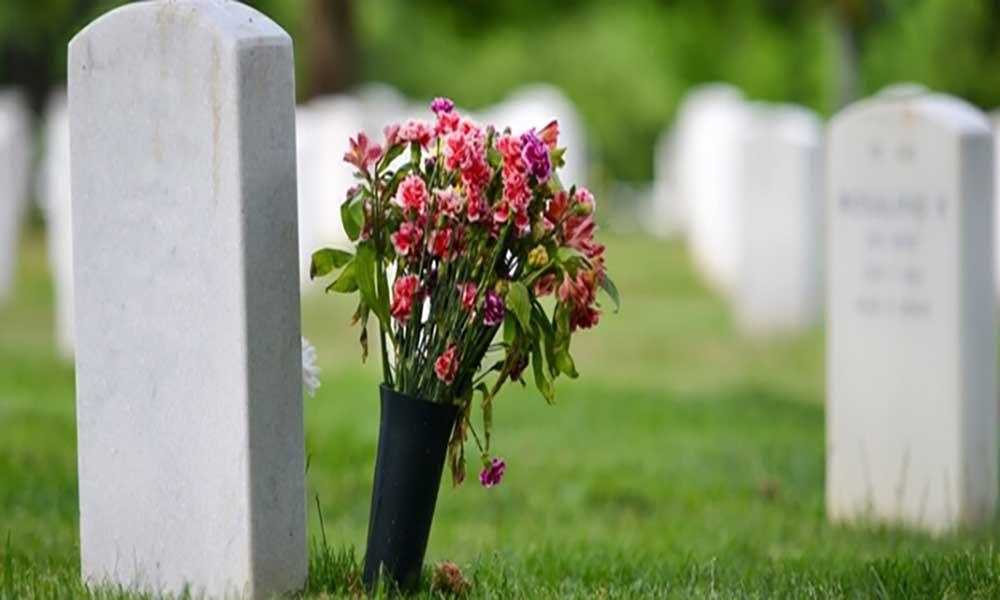 OMS: Quase metade das mortes no mundo tem uma razão