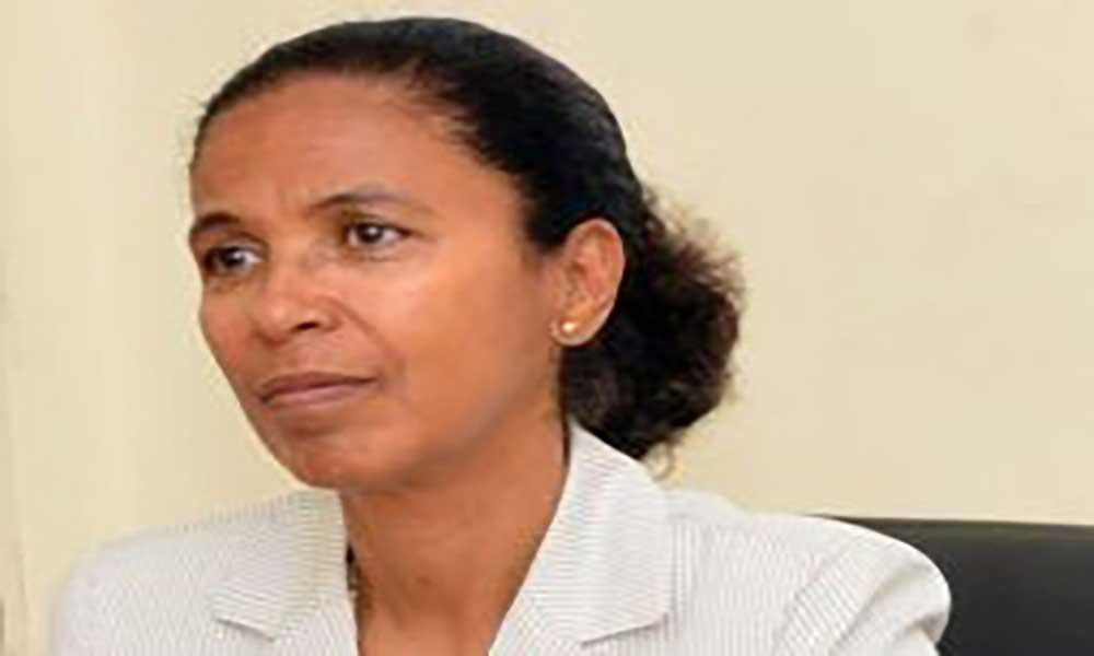 Governo organiza formação em infra-estruturas sustentáveis