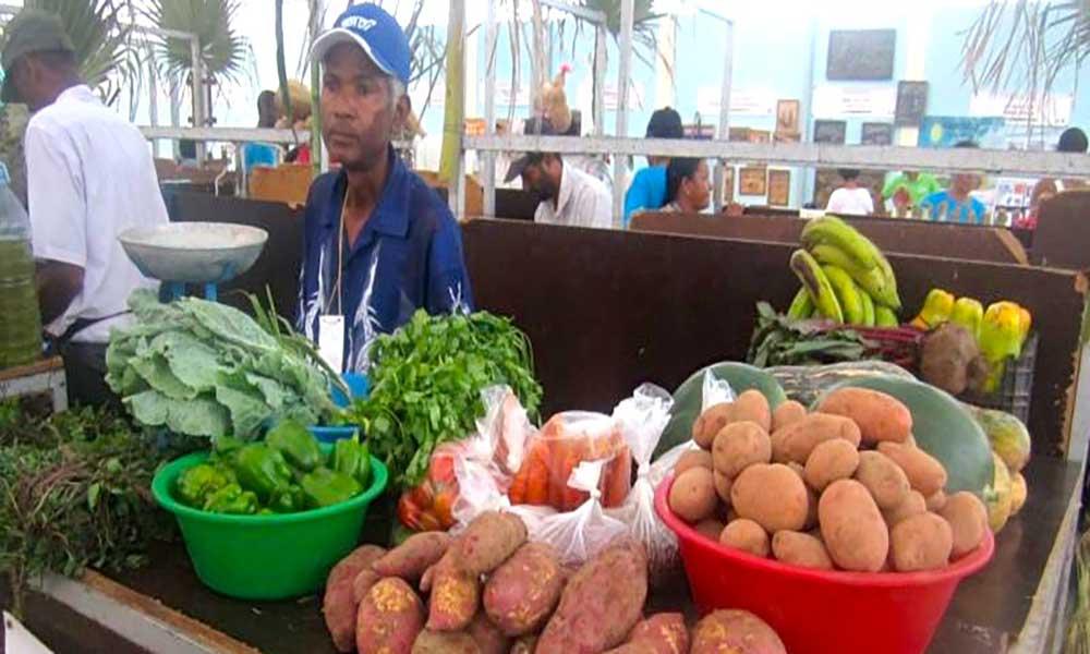 """Santo Antão: Agricultores querem """"união"""" dos deputados desta ilha na questão do embargo aos produtos agrícolas"""