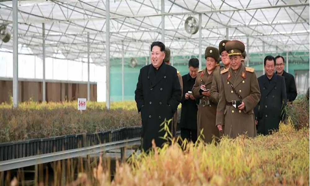 Coreia do Norte cancela festival para turistas devido à seca