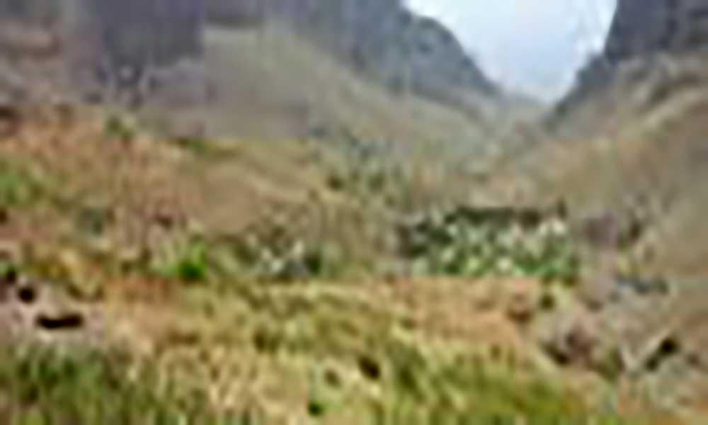 Projecto Raízes aposta em vídeos promocionais temáticos para fomento do turismo local