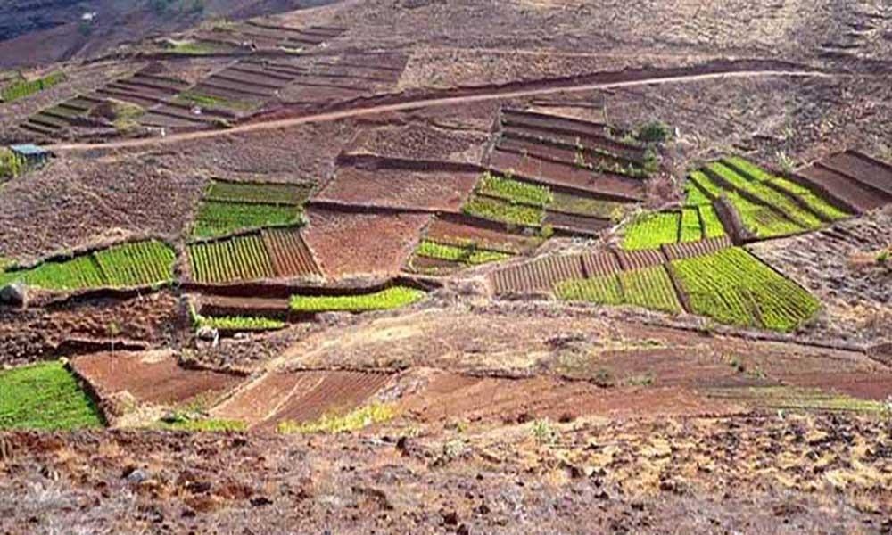 Santo Antão: Projecto sobre agricultura integrada do Porto Novo contempla 14 famílias com parcelas de terra
