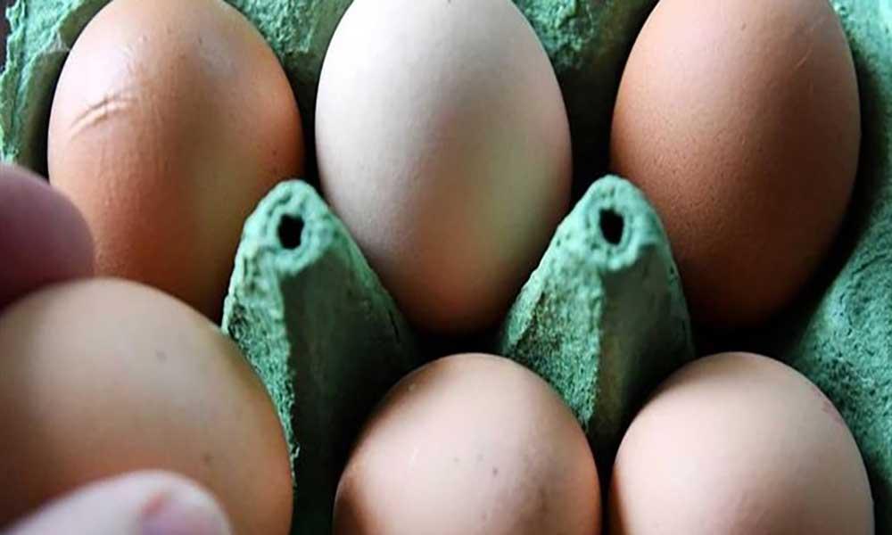 ARFA diz que ovos contaminados já não estão no mercado nacional