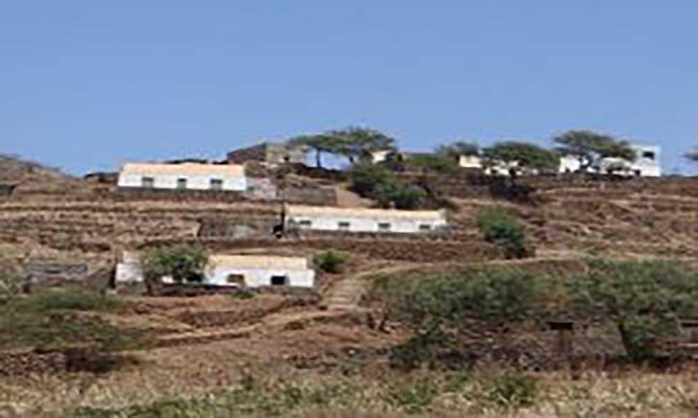 Governo de Piemonte oferece unidade de produção de ração aos produtoresdo Planalto Norte
