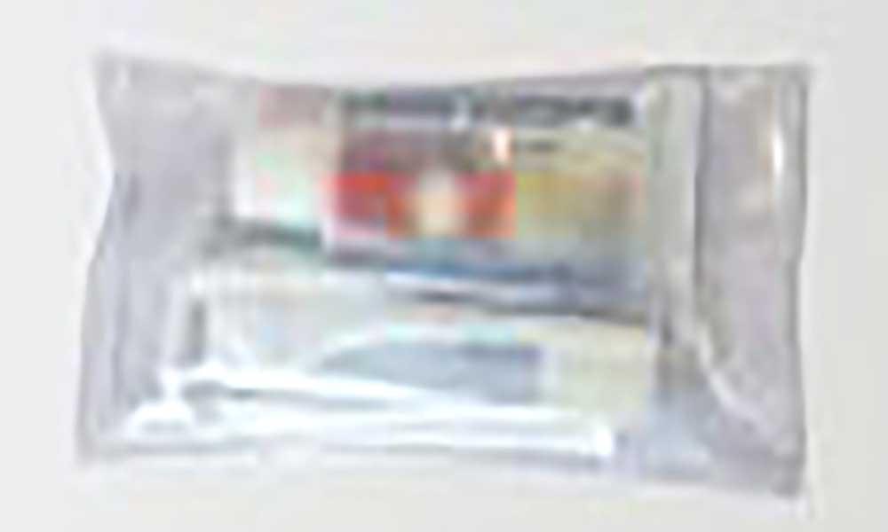 Caminheiros dos Olivais (Lisboa) vão distribuir 'kits' de higiene oral em escolas de Cabo Verde