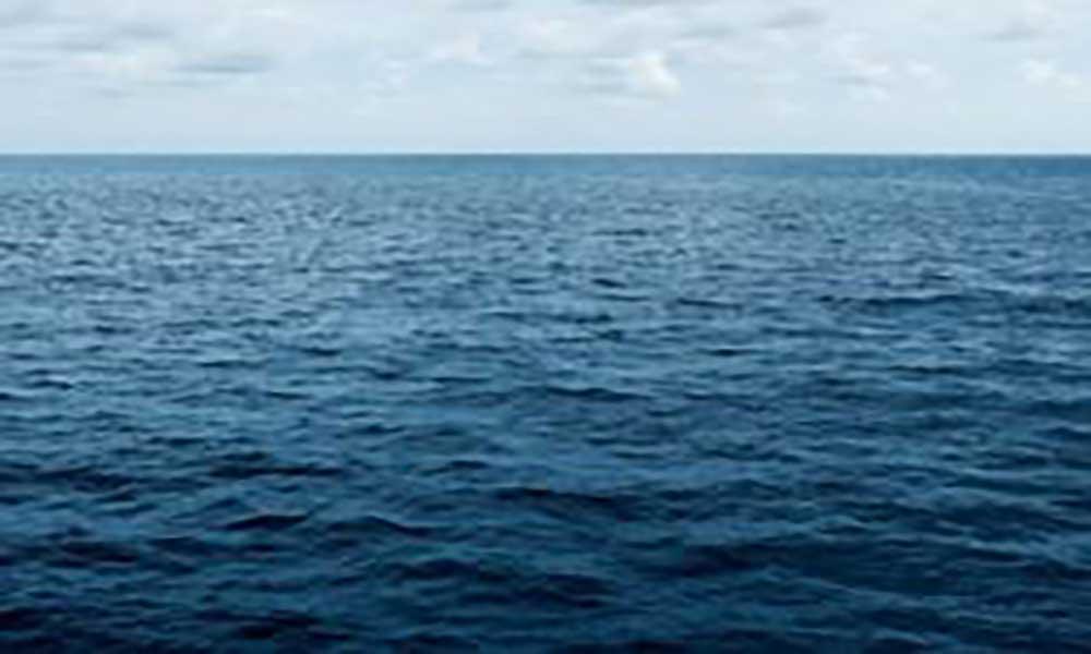 Cientistas alertam para um dos efeitos mais graves da actividade humana sobre o ambiente