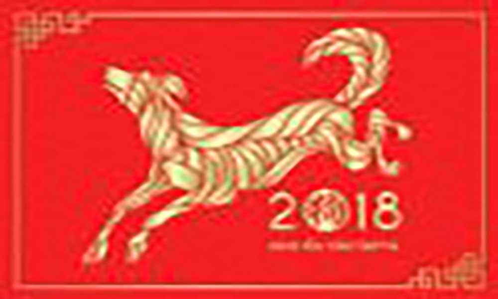 AMICACHI realiza semana cultural em comemoração do novo ano chinês