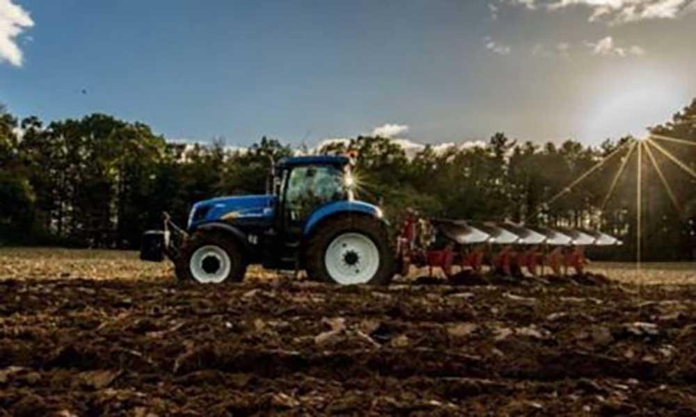 Portugal: Seca ameaça produção de milho