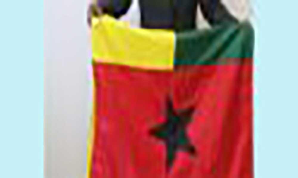 Guiné-Bissau: Ministro da Juventude pede reforço de voluntariado