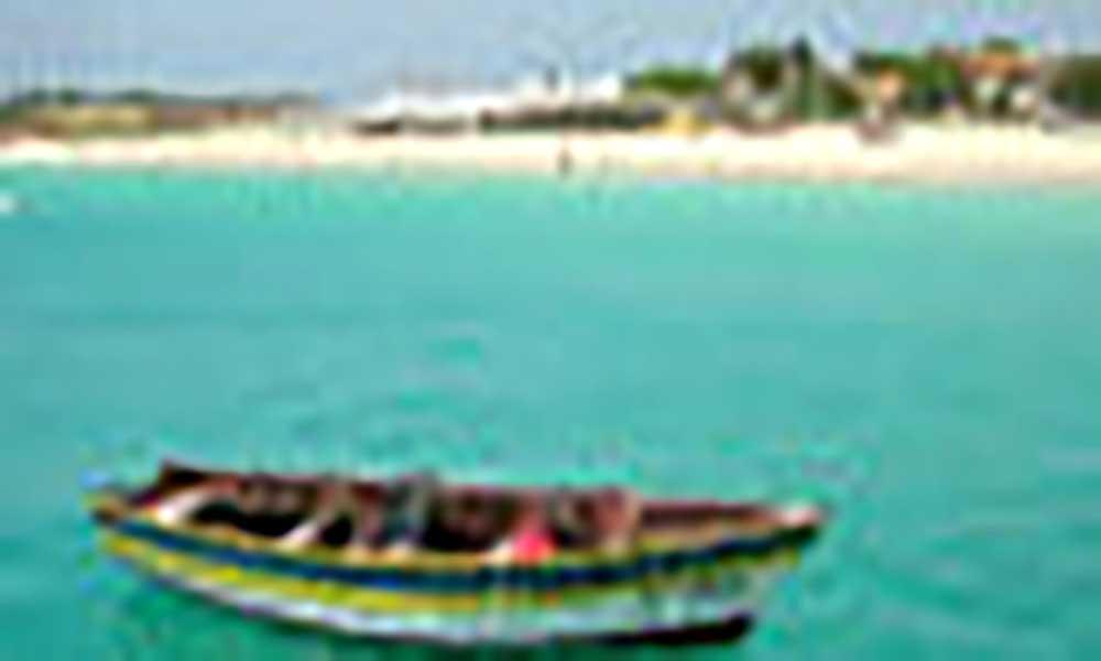 Bióloga alerta para necessidade de proteção das espécies marinhas em Cabo Verde ser atualizada