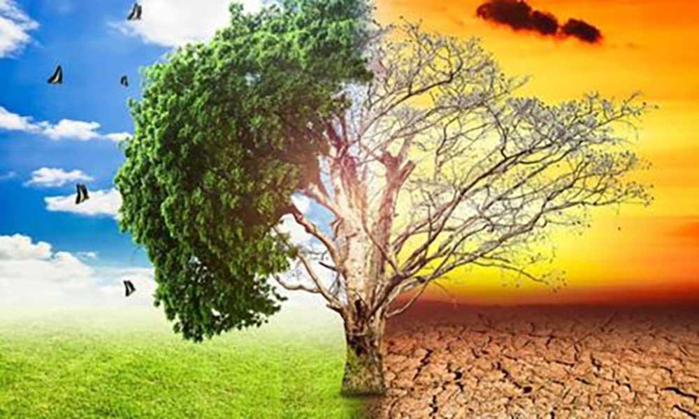 Tribunal Europeu aceita processo contra UE por alterações climáticas