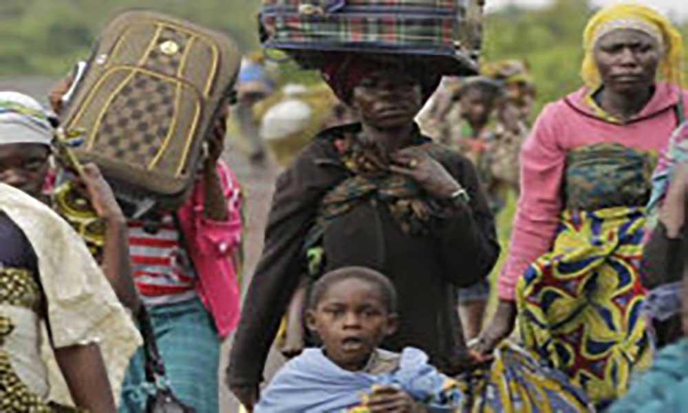 Angola: Governo vai contabilizar refugiados no país