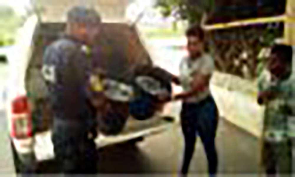 """Santa Catarina: PN apreende """"tchitcharinho"""" pescado de forma ilegal"""